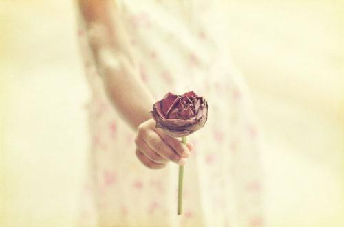 就让记忆永不复苏,我便会永远陪在你身边| jiaren.org